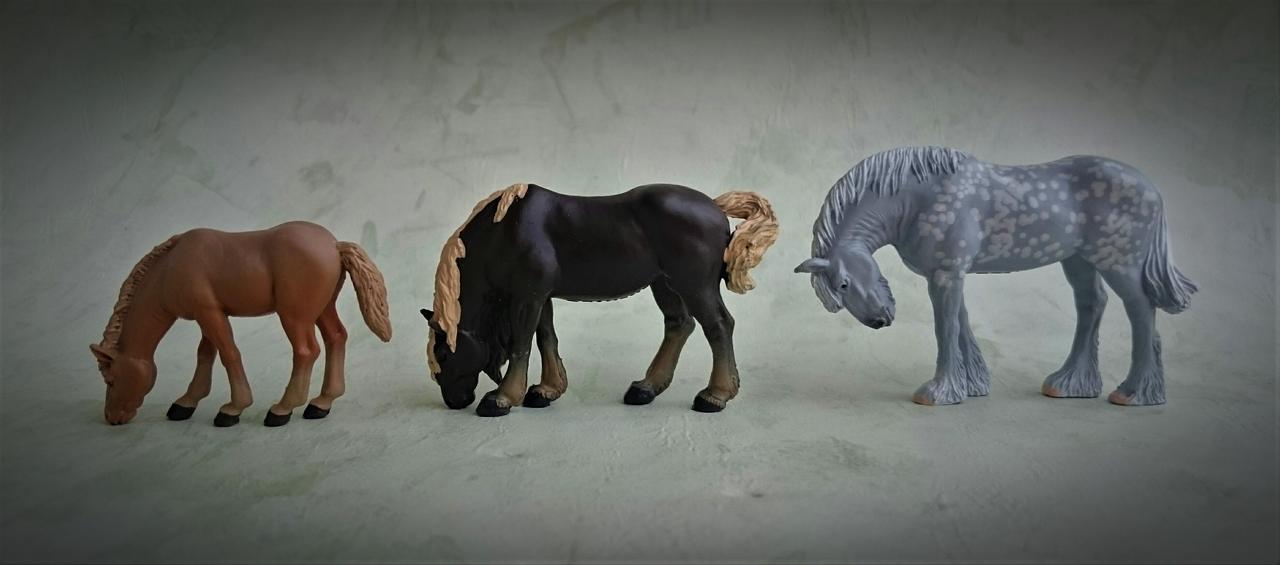 Panini - Shire horse - walkaround  Image