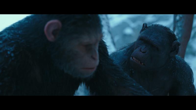 La guerra del planeta de los simios (2017) [Ver Online][HD 1080p][Castellano + Latino + VOSE] La_guerra_del_planeta_de_los_simios_2