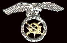 casco - Casco Mº M-I USA Paracaidista - BRIPAC Esparae1