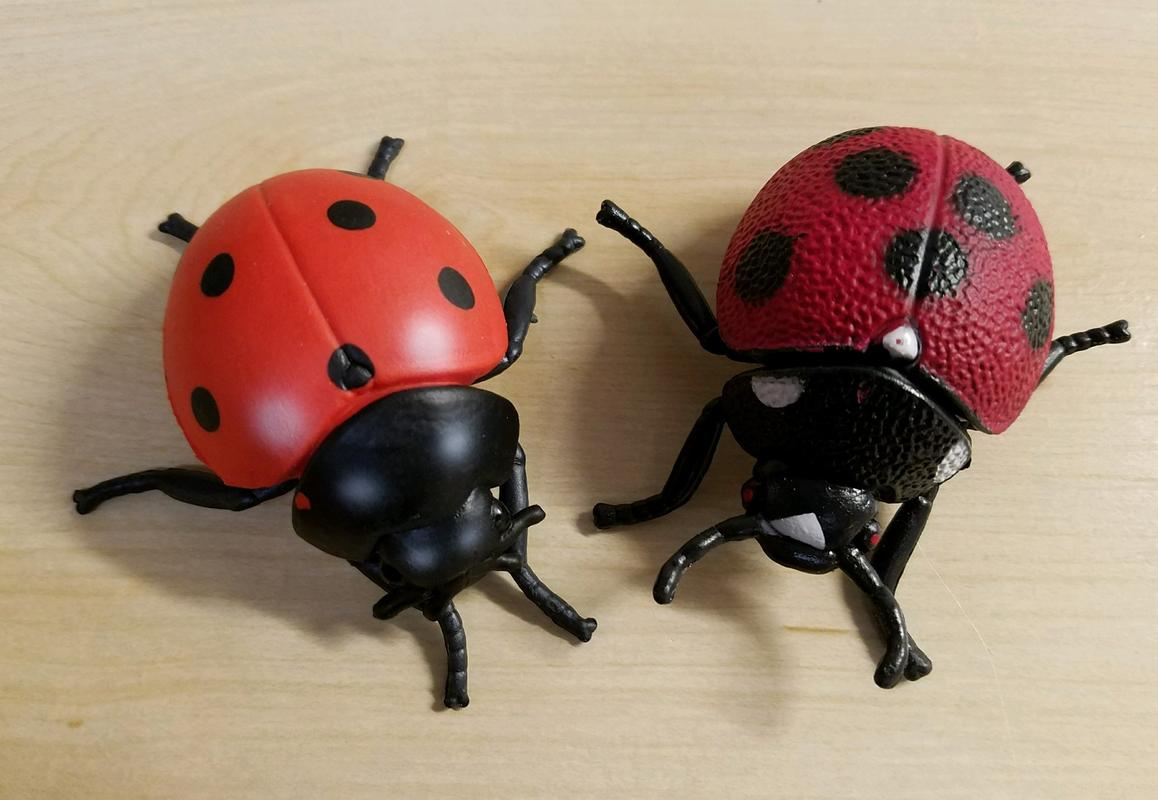 Lady Bug(s) (Bullyland) 20180215_195602