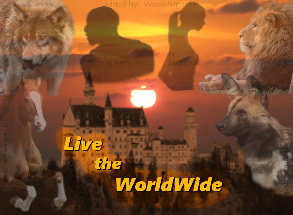 Live-the-WorldWide Ltw_ad_page_banner