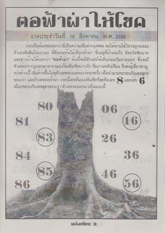 16 / 08 / 2558 MAGAZINE PAPER  - Page 3 Palangtean_3
