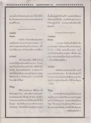 16 / 08 / 2558 MAGAZINE PAPER  - Page 4 Yodmahaloy_34