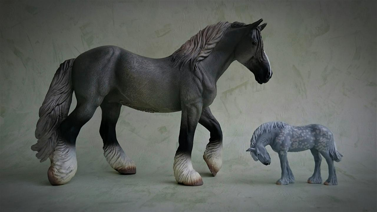 Panini - Shire horse - walkaround  20170829_223033