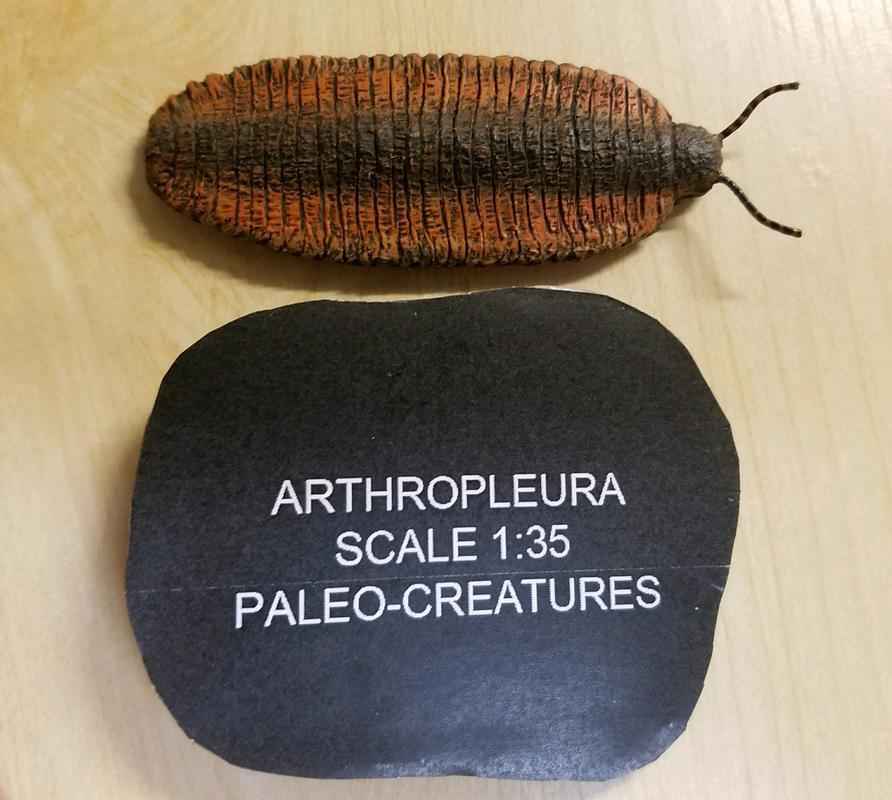 walk-around: Arthropleura armata (Paleo-Creatures) 20171214_172748