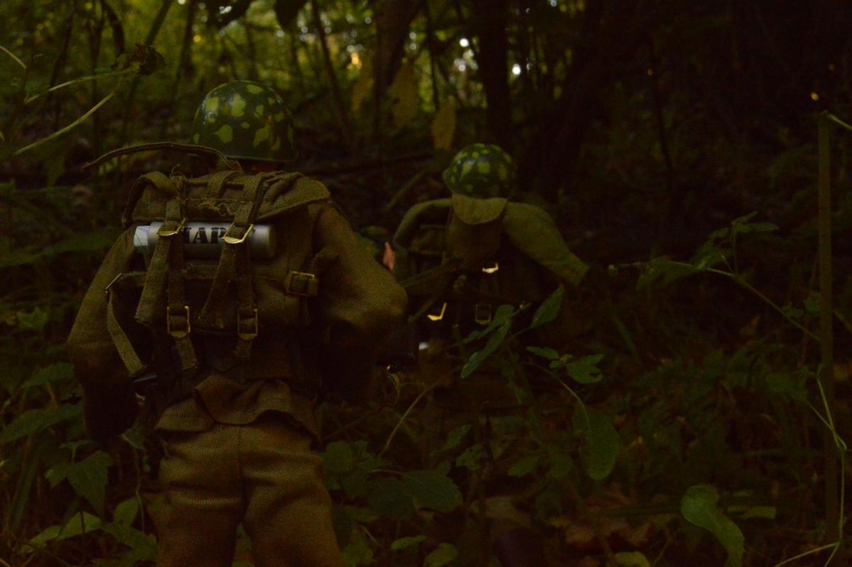U.S. Army in Bang Sathanthi DSC_0007