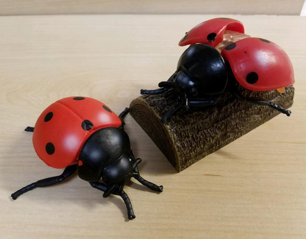 Lady Bug(s) (Bullyland) 20180215_195506