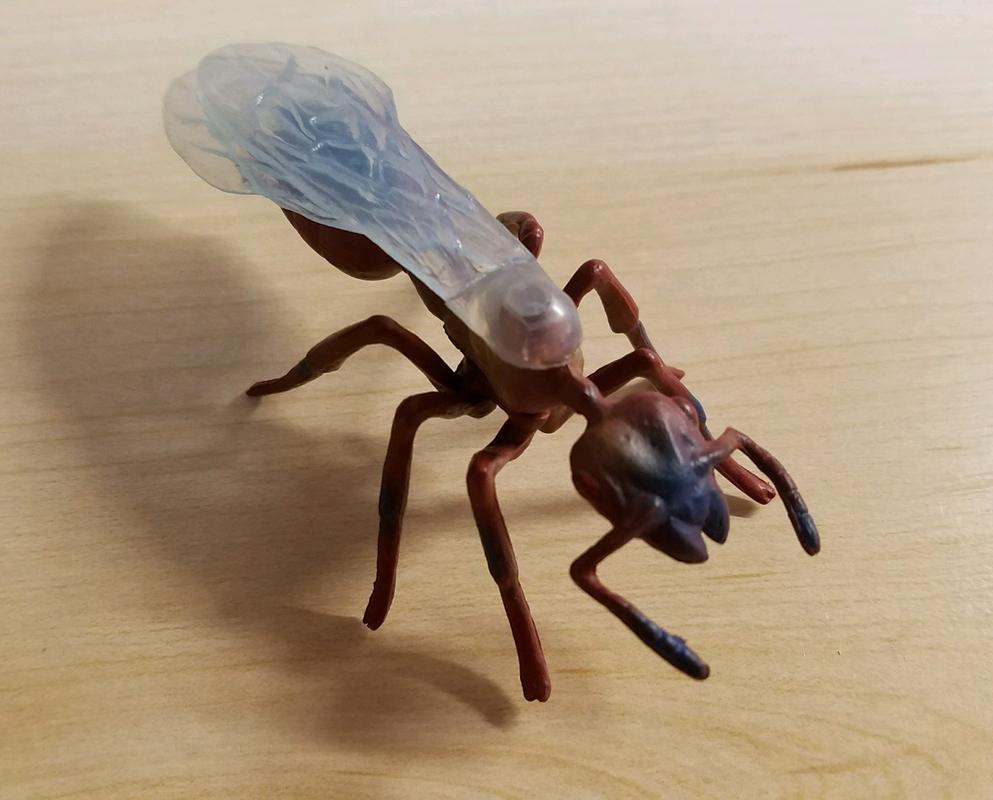 Ant, male (Bullyland) 20180219_155502