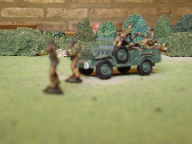 Asalto aliado en los setos DSC00973