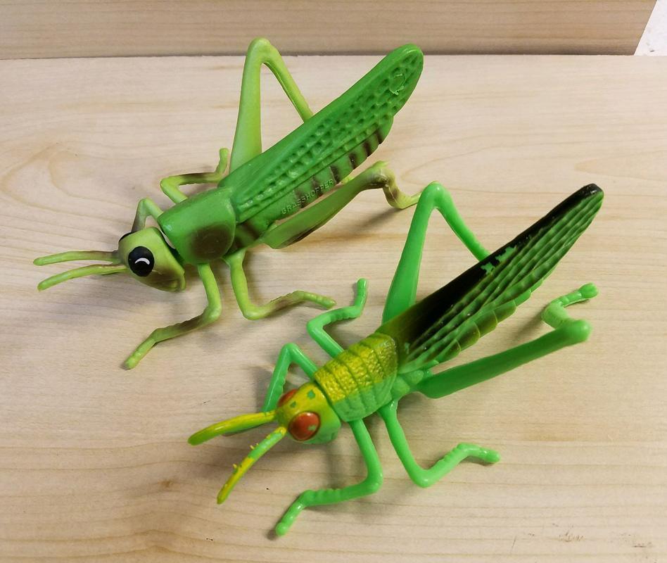 Grasshopper (Bullyland) 20180217_074721