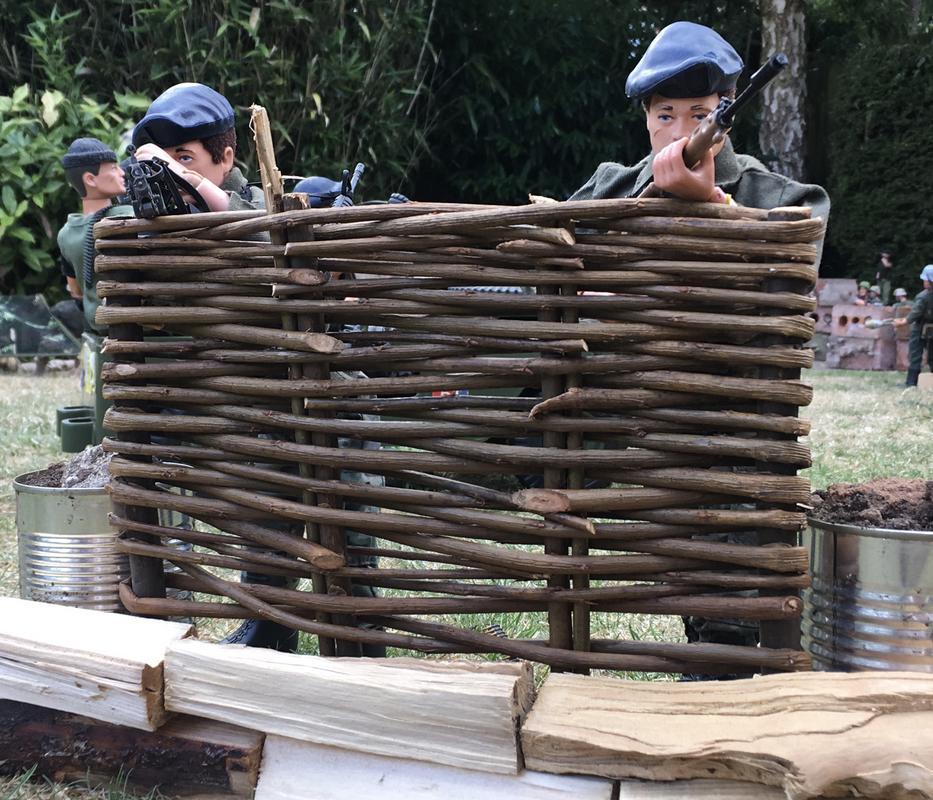 The Munrovians prepare their defenses..part 1. Fullsizeoutput_c22