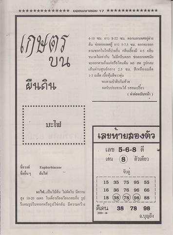 16 / 08 / 2558 MAGAZINE PAPER  - Page 4 Yodmahaloy_37