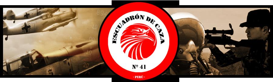 Escuadrón de Caza Nº41