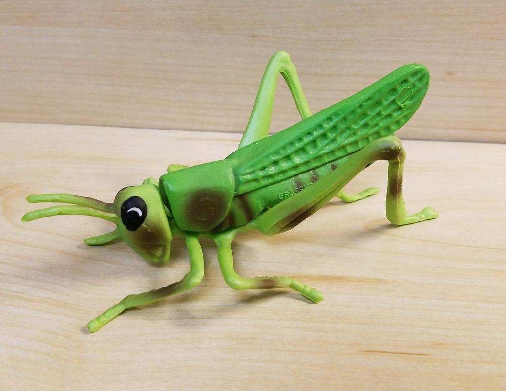 Grasshopper (Bullyland) 20180217_074553