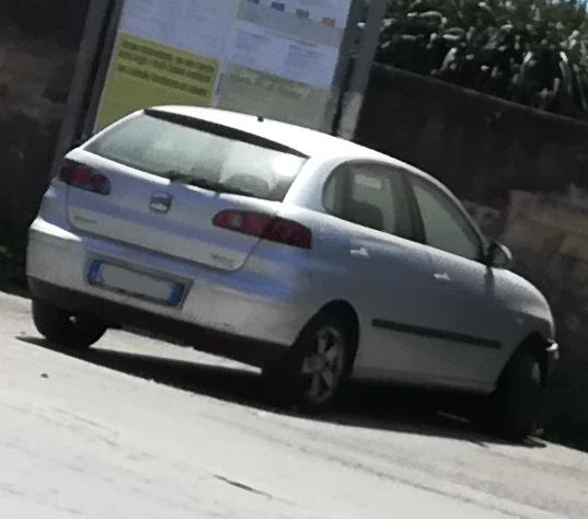 Auto Abbandonate - Pagina 6 Ibiza