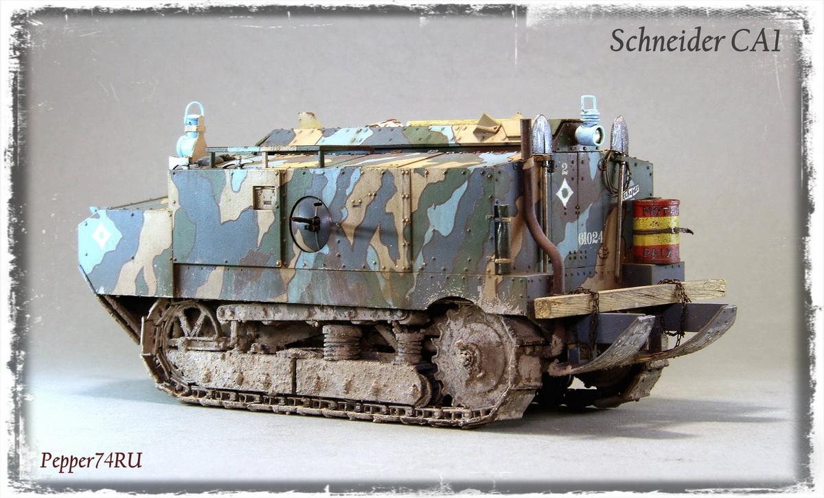 Schneider CA1 Schneider_ca1_0007