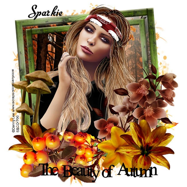 KNOCK - KNOCK - Page 6 Beauty_of_Autumn