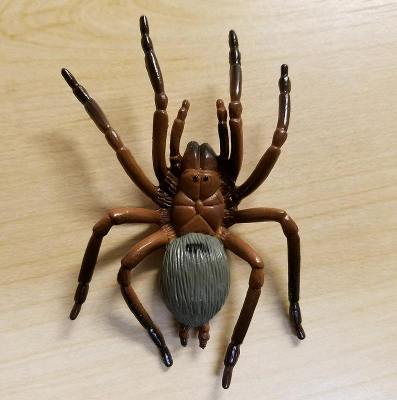 Review: Spiders to Go (Club Earth) 20180120_110927