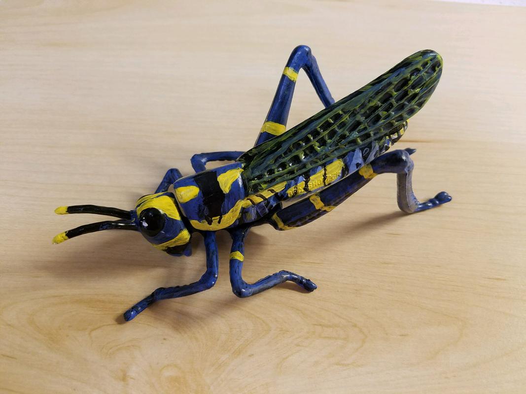 Grasshopper (Bullyland) 20180220_161114