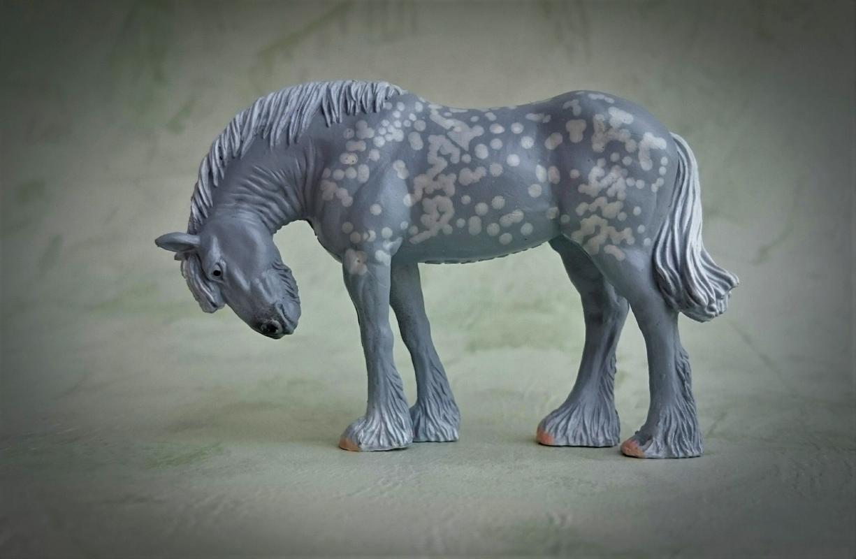 Panini - Shire horse - walkaround  20170829_221654