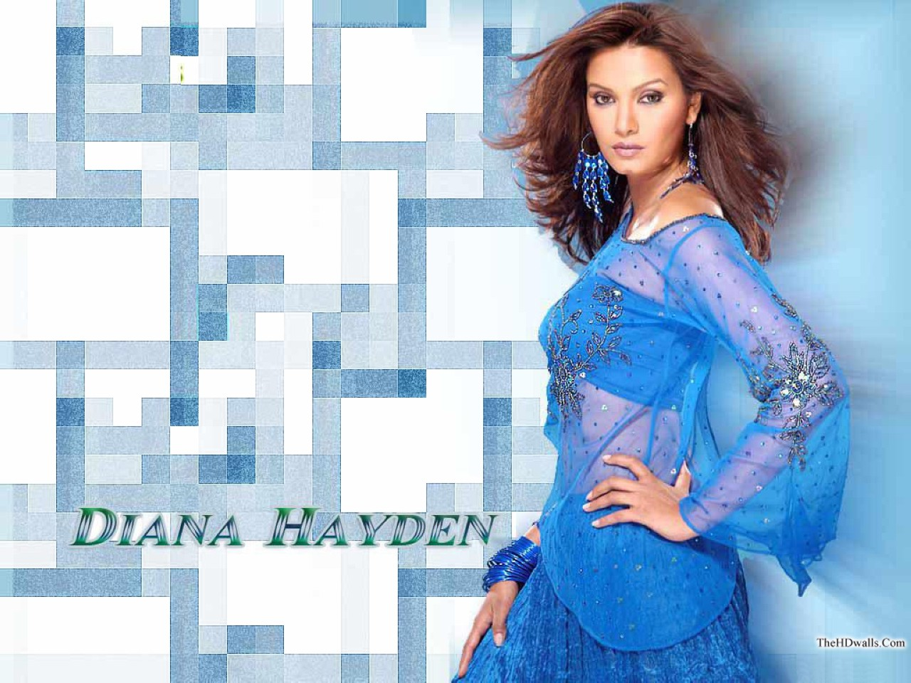 Bollywood Diana Hayden wallpapers Diana_hayden_hq_bollywood_celebrity_wallpapers_h