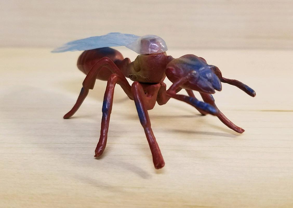 Ant, male (Bullyland) 20180219_155525