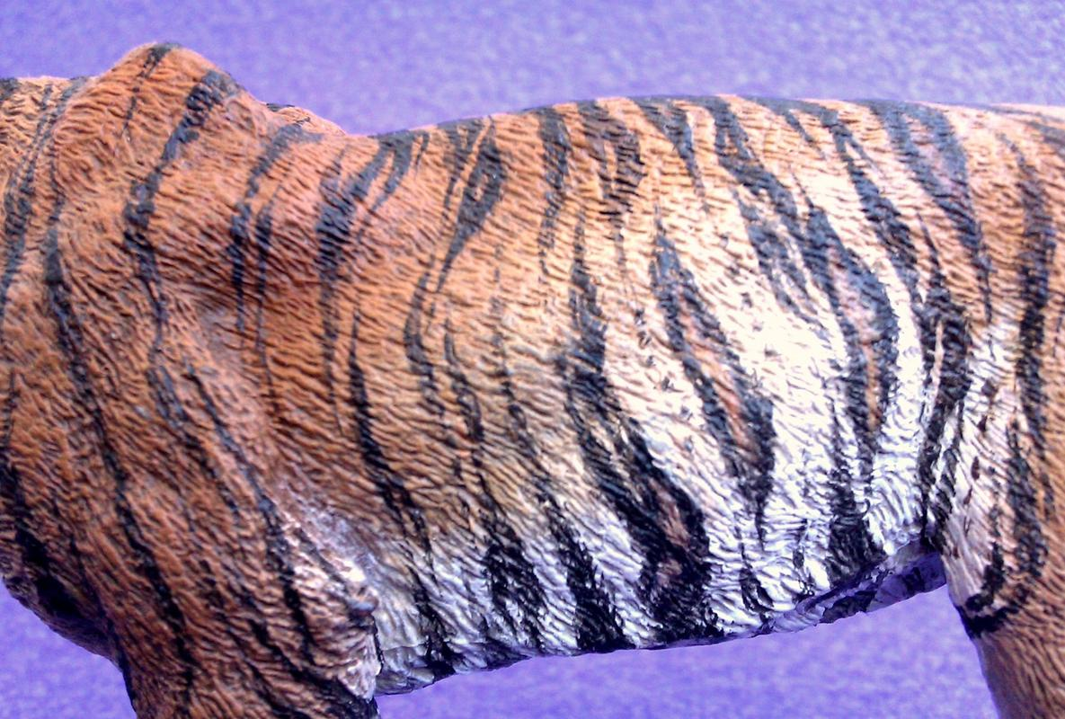 Repainting a TIGER in ``Kosta`s style`` :D - Page 5 Image