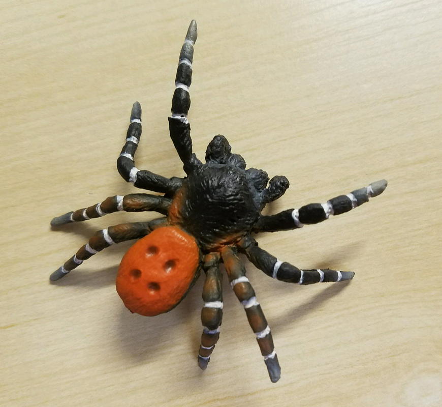 Velvet Spider (Bullyland) 20170310_114055