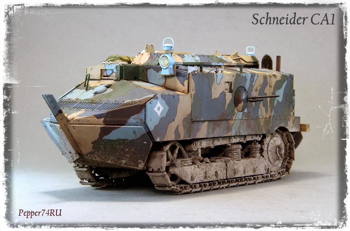 Schneider CA1 Schneider_ca1_0005