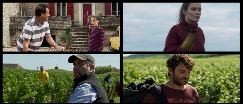Nuestra vida en la Borgoña (2017) [Ver + Descargar] [HD 1080p] [Castellano] [Drama] 083_FOZCMDGI5_LKH5_Y6_BGR