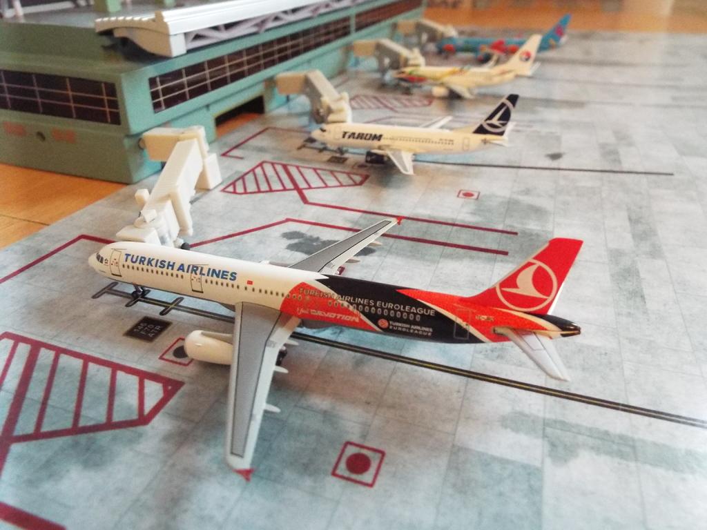 Aeroporturi in miniatura 1:400 - 1:500 DSCF5563