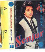 Mustafa Sejnur - Diskografija  1_R-8905067-1471183416-9126.jpeg