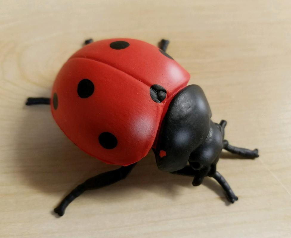 Lady Bug(s) (Bullyland) 20180215_195440
