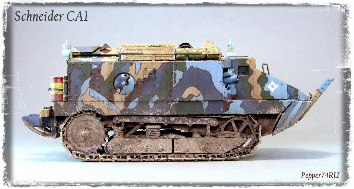 Schneider CA1 Schneider_ca1_0002