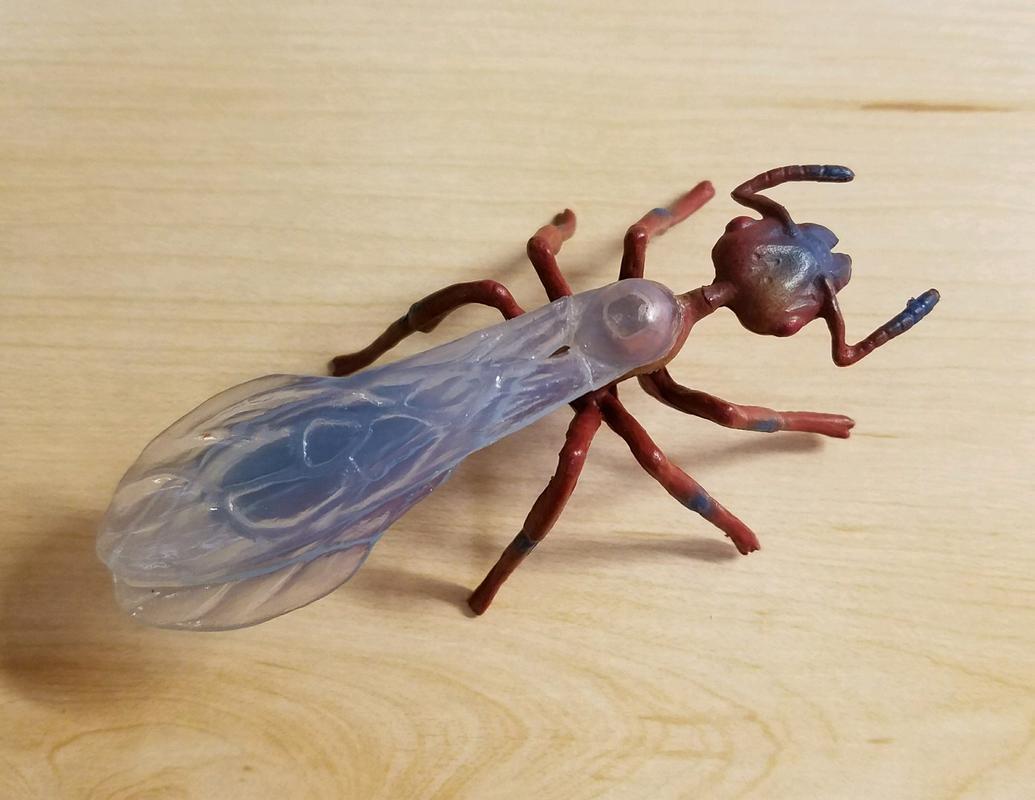 Ant, male (Bullyland) 20180219_155458