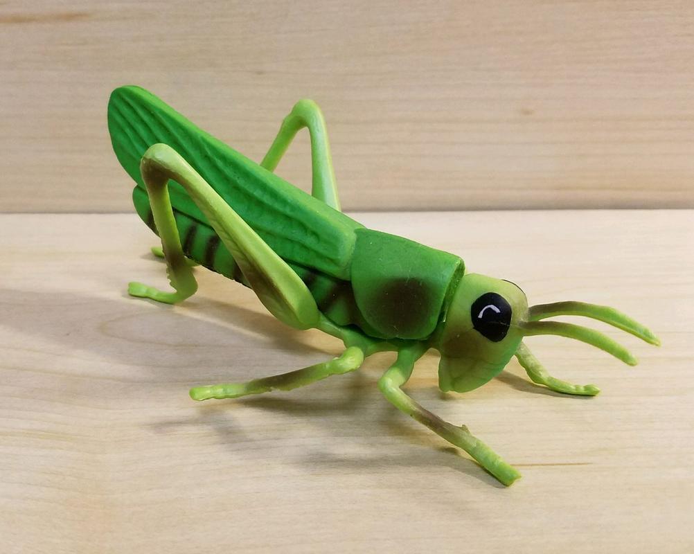 Grasshopper (Bullyland) 20180217_074605