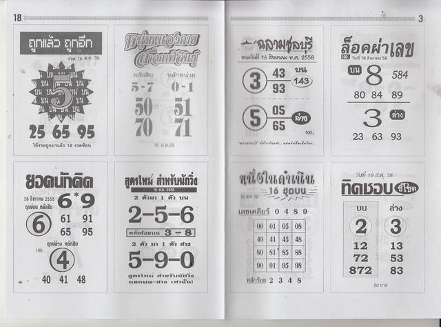 16 / 08 / 2558 MAGAZINE PAPER  - Page 3 Maseemokegreen_3