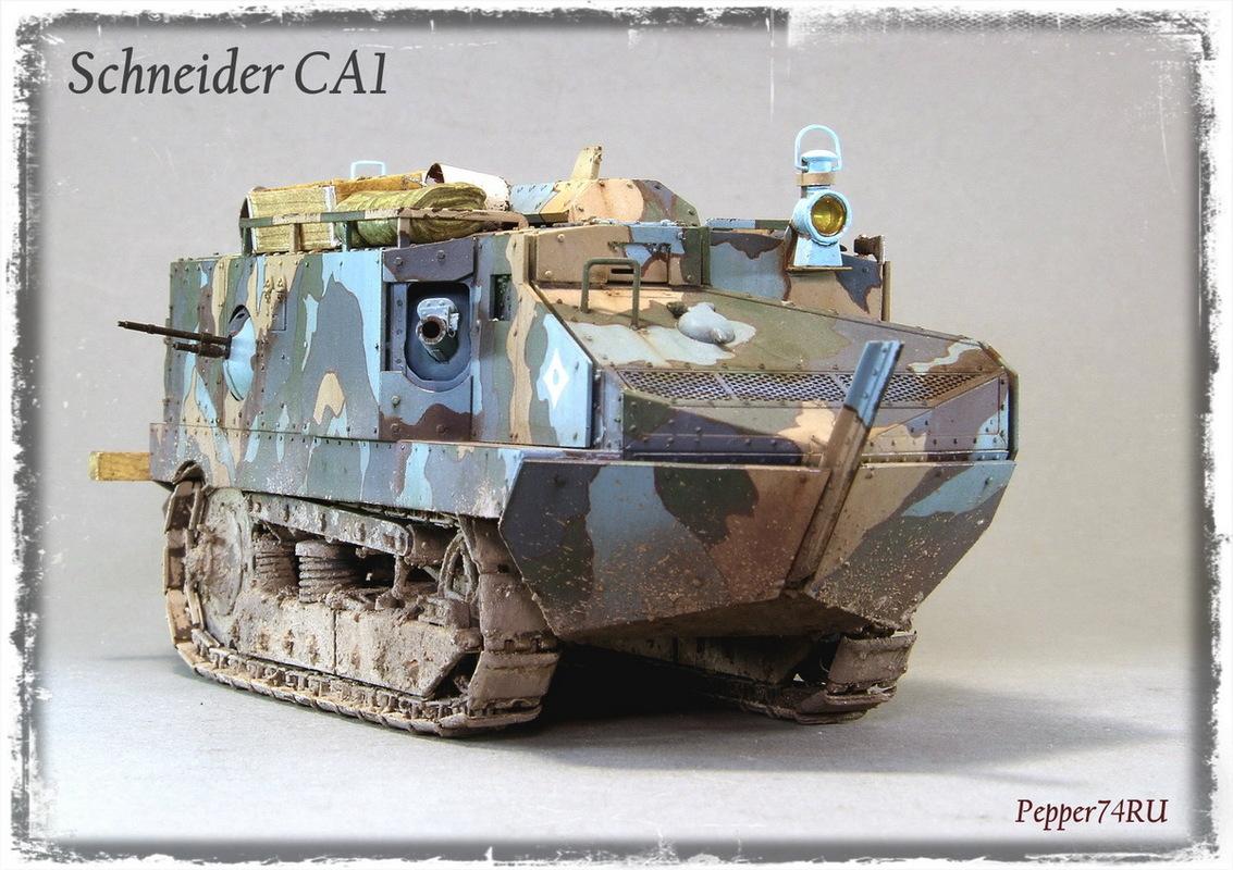 Schneider CA1 Schneider_ca1_0004