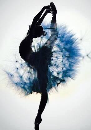 Bienvenidos al nuevo foro de apoyo a Noe #274 / 16.07.15 ~ 21.07.15 Ballet-blue-dance-flower-Favim.com-2155681
