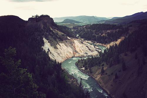 Peisaje... - Page 10 Forest-hills-mountains-nature-river-Favim.com-261260