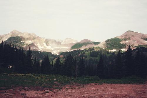 Peisaje... - Page 12 Forest-mountains-nature-photography-Favim.com-300276