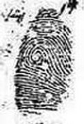 X - WALT DISNEY - One of his fingerprints shows an unusual characteristic! - Page 5 Right_index_whorl_fbi_2