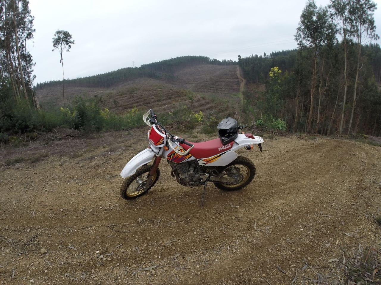 Yamaha TTR 250  96 GOPR0470
