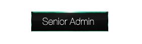 Senior Admin (80)