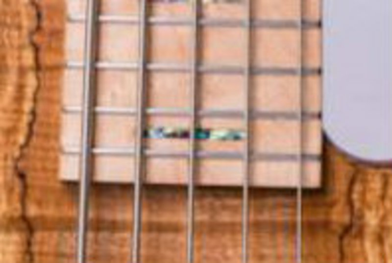 Construção caseira (amadora)- Bass Single cut 5 strings 1497630_716837281693931_205078775_n