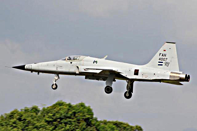 Fotos y videos de las FFAA de Honduras y equipos de los Bomberos 15116_1374776281