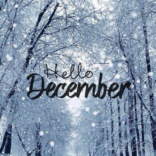 ახალი წელი მოდის... ! - Page 44 24177043_1657517194306852_6172148834708436521_n