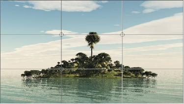Aquarismo: Como as regras basicas de fotografia podem nos ajudar??? Sem_t_tulo