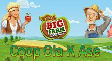 Coop Ola K Ase BigFarm