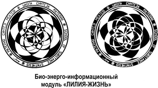 Модули Шакаева. Графика 2Pv4C